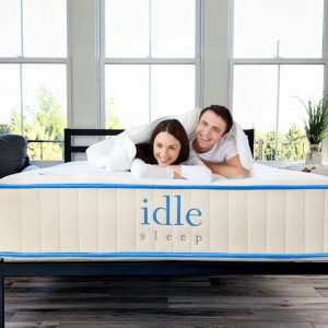 idle-hybrid-1.jpg